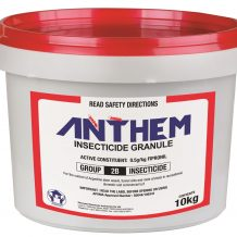 anthem10kgbucket-web