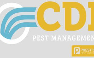 Termite and pest Technician for the southern suburbs of Brisbane